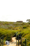 coastal trail in dana point