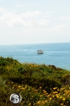 spirit of dana point sails past headland