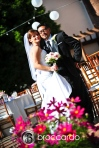 franciscan gardens wedding0005