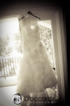 Dana pooint ocean institute wedding photography